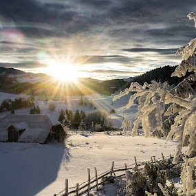 December morning in Fundata by Catalin Caciuc - Landscapes Mountains & Hills ( snow, frost, fuji, fundata, sunrise, x100, flare, morning, sun )