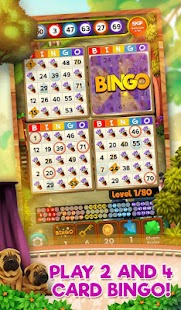 Bingo Pets Party: Dog Days for pc