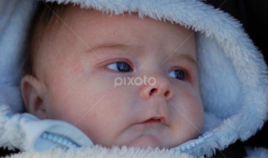 Fluffy by Vincent Nieass - Babies & Children Children Candids ( fluffy, blue, baby )