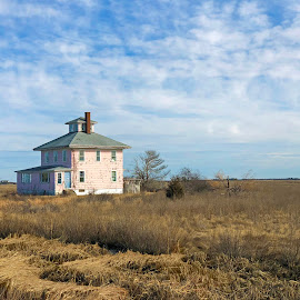 The Pink House Against a Blue WinterSky by Kristine Nicholas - Novices Only Landscapes ( clouds, houses, browns, marshes, blue, marsh, cloudy, pink, architecture, house, rural,  )
