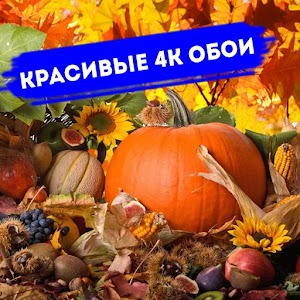 Download Осень Обои HD 4K Autumn Wallpapers For PC Windows and Mac