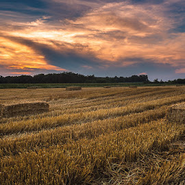 After the Harvest II. by Dani Turnšek - Landscapes Prairies, Meadows & Fields ( canon, sunset, slovenia, harvest, landscape, fields, whey )
