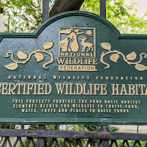 National Wildlife Federation Certified Wildlife Habitat This property provides the four basic habitat elements needed for wildlife to thrive: food, water, cover and places to raise young. Submitted ...