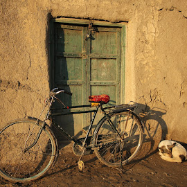 Green door by Amna Naqvi - Transportation Bicycles (  )
