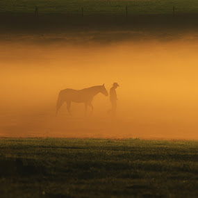 journey by Earl Wyant - Landscapes Prairies, Meadows & Fields ( cowboy, fog, rise, art, horse, south, western, fine, walk, west, sun, mist, land, device, transportation )