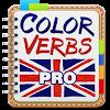 English Irregular Verbs PRO