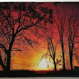 Rustic Sunrise by Nancy Tonkin - Painting All Painting ( wood, sunrise, painting, rustic,  )