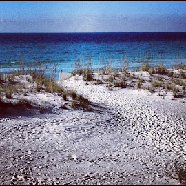 Pensacola Beach by Mary Phelps - Instagram & Mobile iPhone ( pensacola, instagram, florida, square, beach, iphone )