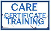 Online Care Certificate Training Courses - Skills for Care Aligned -