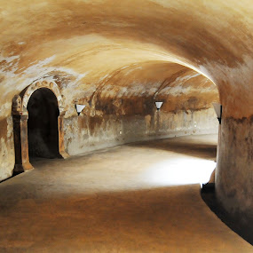 Tunnel by Jenni Ertanto - Buildings & Architecture Public & Historical ( building, old, mystical, historical, tunnel )