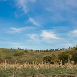by Baggelis Karaliolios Zerofive - Landscapes Prairies, Meadows & Fields