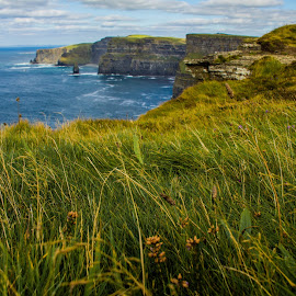 Grassy Cliffs of Moher by Trevor Fairbank - Landscapes Travel ( cliffs, ireland, grass, green, county claire, cliffs of moher, travel, landscape )