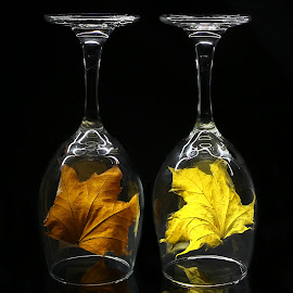 by Todd Klingler - Artistic Objects Glass