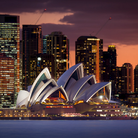 Opera in the Evening by Rebecca Ramaley - City,  Street & Park  Skylines ( skyline, sunset, harbour, long exposure, opera house, sydney )
