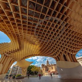 Metropol, Sevilla by Roberto Gonzalo - City,  Street & Park  Vistas