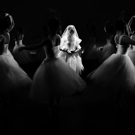 The Willis by Joni Chng - People Musicians & Entertainers ( performance, choreography, ballet, dance, stage, giselle )