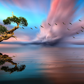 THE FLOC by Nasser Osman - Digital Art Places ( reflection, blurred background, tree, nasser osman, bonsai )