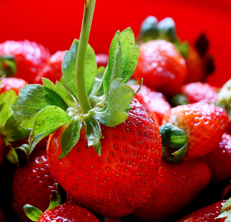 just strawberry by Mary Yeo - Food & Drink Fruits & Vegetables (  )