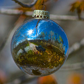 Ornamental Reflection by Rick Schultz - Artistic Objects Other Objects