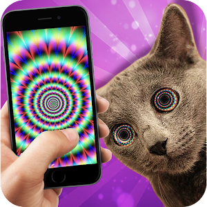Cat Hypnotizer - Illusions
