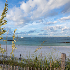 by Sarah Noonan - Landscapes Beaches ( beach fences, florida )