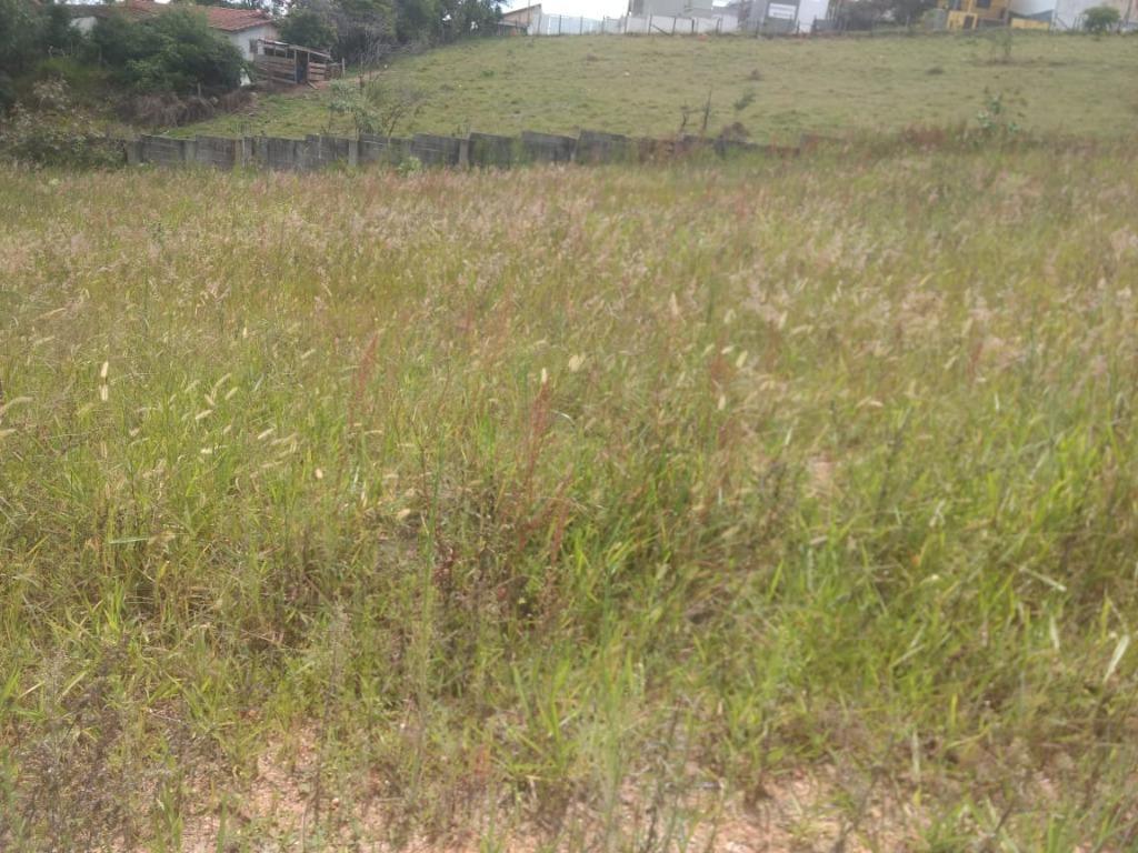Terreno à venda, 250 m² por R$ 190.000 - Jardim das Videiras - Vinhedo/SP