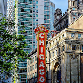 Chicago Theater by Tricia Scott - Buildings & Architecture Public & Historical ( state street, street, chicago theater, theater, chicago, entertainment, city )