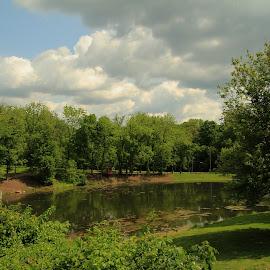 Deming Park Pond by Robin Smith - City,  Street & Park  City Parks ( clouds, water, nature, trees, city park, landscape )