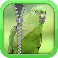 Parrot Screen Locker