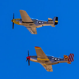 World War 2 Planes  by Dave Lipchen - Transportation Airplanes ( two, flying, war planes, against blue sky, together )