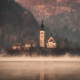Misty Lake Bled by Joyce Chang - Landscapes Travel ( church, fog, slovenia, morning, mist, lake bled )