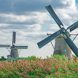 Windmills at Kinderdijk by Ed Mullins - Buildings & Architecture Public & Historical ( dutch, windmills, kinderdijk, windmill, amsterdam, unesco, netherlands, world heritage site )