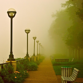 by Suzanne Blais - City,  Street & Park  City Parks ( trottoir, park, tableau, trees, lampadaires, parc, arbres, sidewalk )