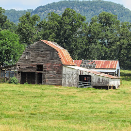 Hanging On by Rick Covert - Buildings & Architecture Decaying & Abandoned ( rustic, country, faded, countryside, rural, arkansas, barns, arkansas photographer )