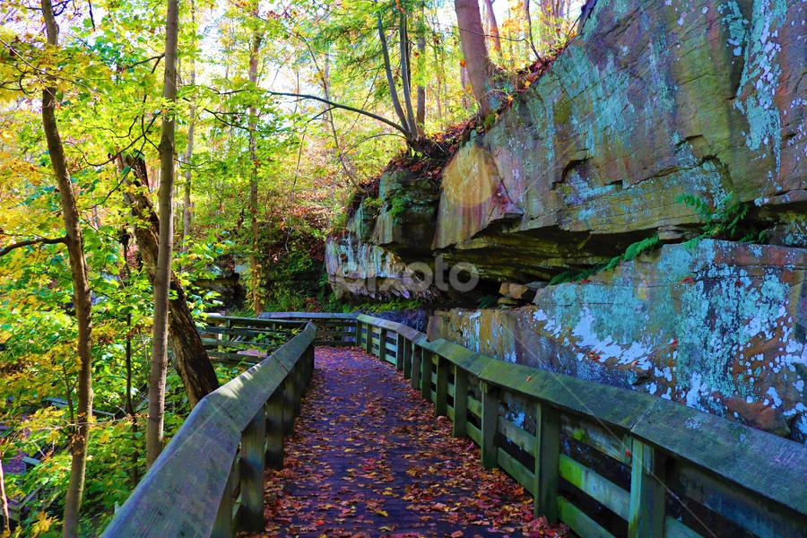 Rock Side Boardwalk by Paul S. DeGarmo - Uncategorized All Uncategorized ( park, side, rock, view, boardwalk,  )