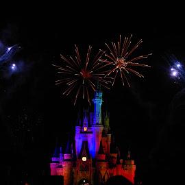 by Carissa Carver - City,  Street & Park  Night ( disney world, fireworks, castle, night, disney )