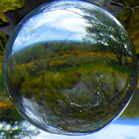 Upside down world by Tracey Yappa - Novices Only Objects & Still Life ( clear, ball, glass, crystal, landscape )