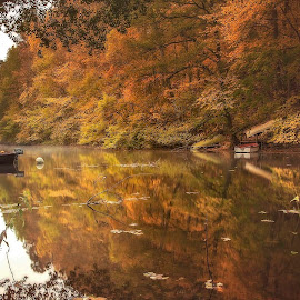 Down by the river by Niclas Ådemark - Landscapes Forests ( colorful, autumn, river )