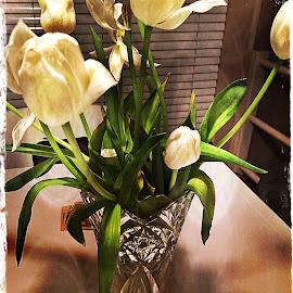 Tulips by Leslie Hunziker - Instagram & Mobile iPhone ( vase, tulips, flowers )