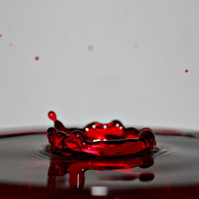 Red Water by Jacques De Villiers - Artistic Objects Other Objects