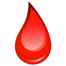 Anmol blood donor search app