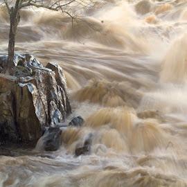 Winter Melt by Ron Kreml - Nature Up Close Water ( water, flood, rage, rocks, dangerous, river )