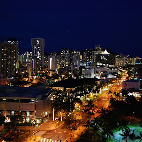 Honolulu at Night by Karen Santilli - City,  Street & Park  Vistas ( lights, skyline, street, buildings, honolulu, palm trees, night, hawaii, island, waikiki, city )