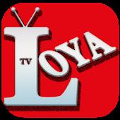 Free Download Loya TV - Turk Mobil Canli tv APK for Samsung