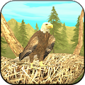 Game Wild Eagle Sim 3D apk for kindle fire