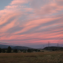 PINK SKIES by Cynthia Dodd - Novices Only Landscapes ( field, clouds, peaceful, colorful, beauty )