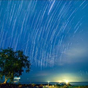 star trails1-2.jpg