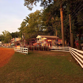 Neshoba County Fair  by Andrew Williams - Landscapes Travel