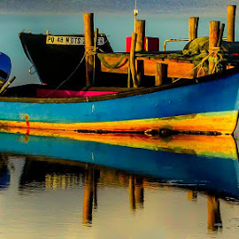 Two of a kind by Petrus En Janine Theron - Transportation Boats