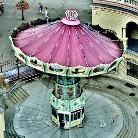 Swing Grape by Gary Ambessi - City,  Street & Park  Amusement Parks